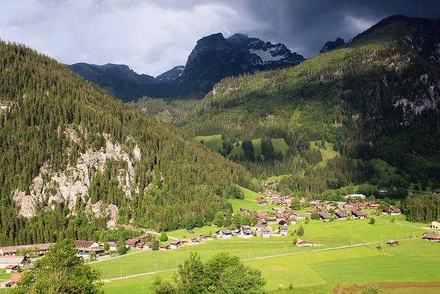 🇨🇭 Alpine meadows / Алпийски поляни