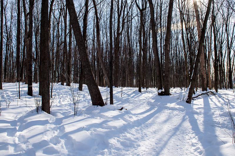 lun, 02/08/2021 - 10:38 - Parc Nature hiver 2021