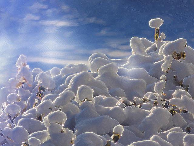 In a Snowy Alien World