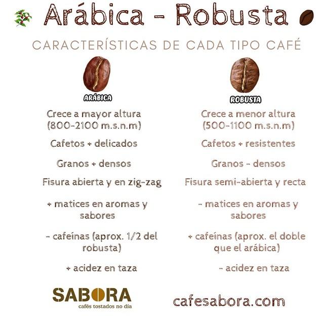 Arabica  y  Robusta Características