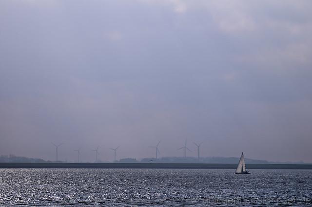 Ein Segler auf der Elbe vor Brunsbüttel