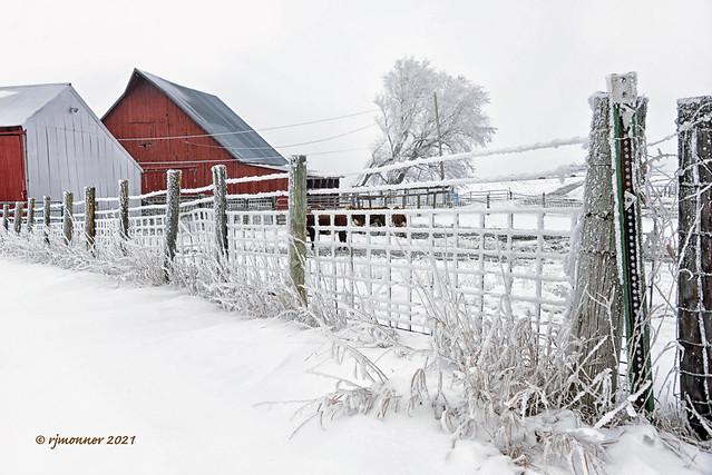 Winter Wonderland_213679