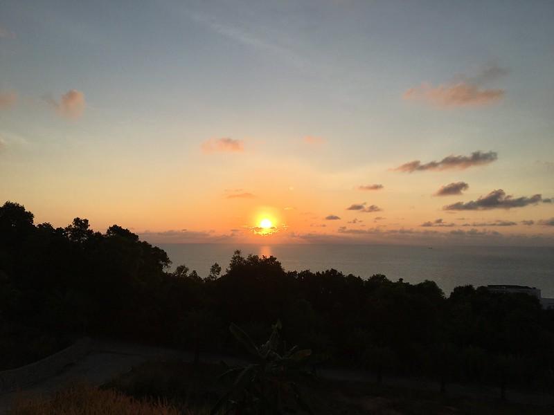 サムイ島から日々雑感-ライスベリーとセンナハーブティーFITNE