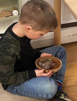 examining the small nest