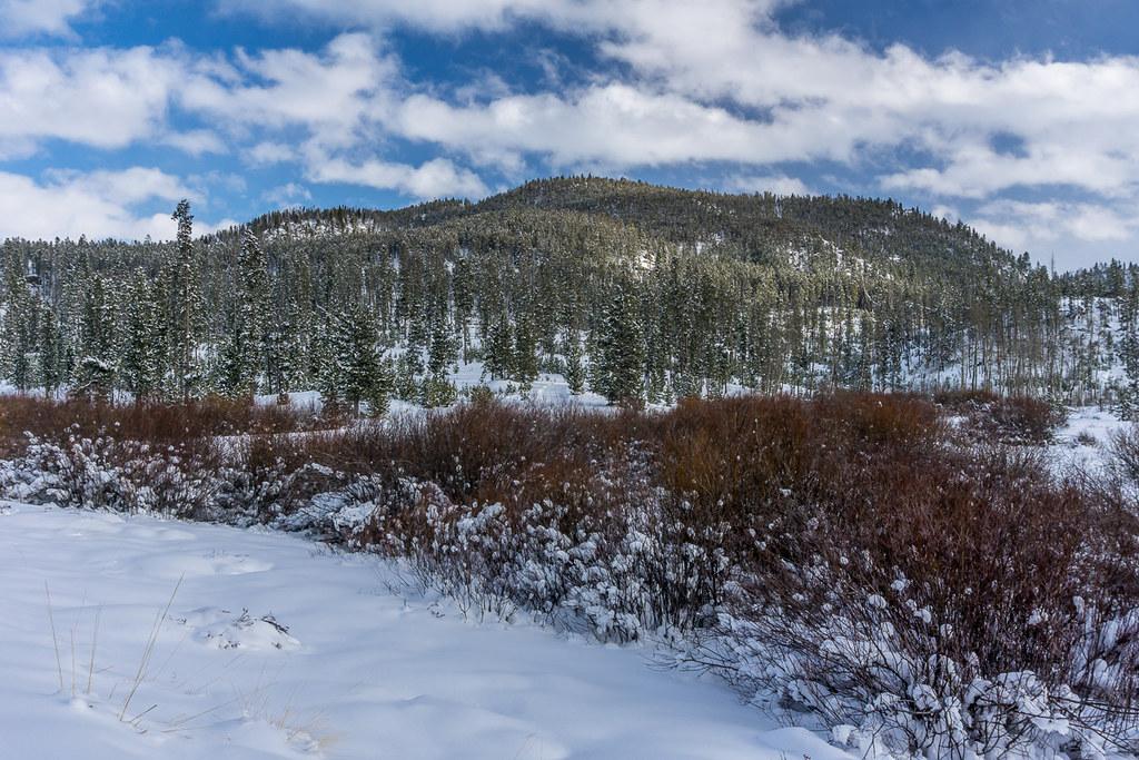 5 (Moose Creek valley)