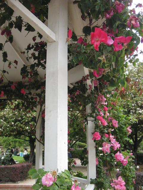 Detail of the Alister Clarke Rose Garden Rotunda - St Kilda Botanical Gardens, St Kilda
