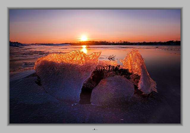 Sunrise Biesbosch 6