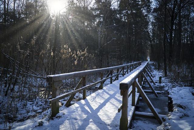 Langer Weg ; Long Way