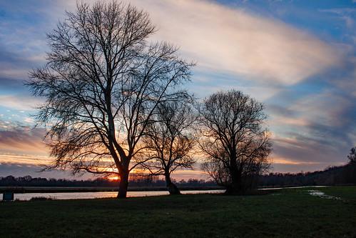 cambridgeshire gbr sunset unitedkingdom winter uk england stives thethicketpath