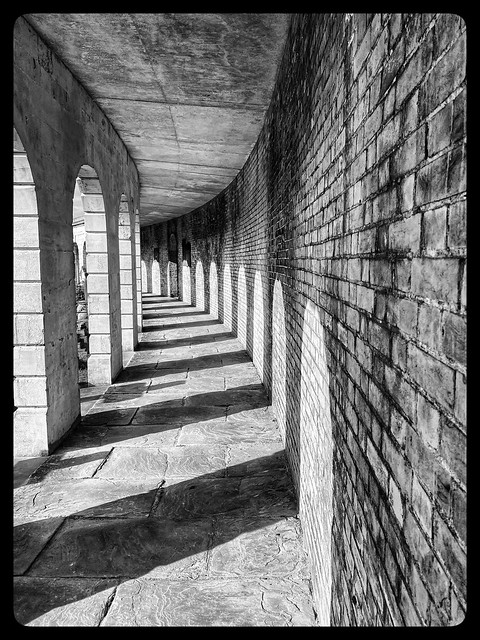 Light and shade in Brompton Cemetery