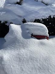 Snowed in tractor