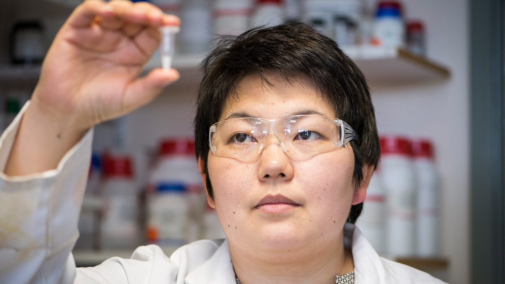 Dr Asel Sartbaeva in her lab