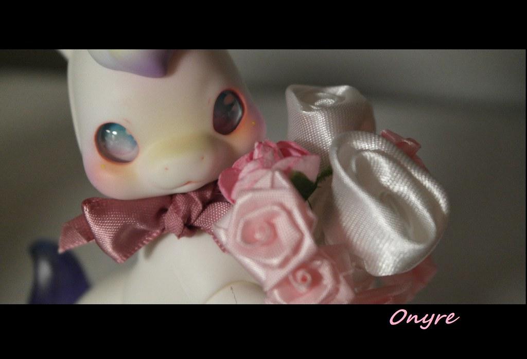 [Cocoriang - Creil] Des Roses pour Valentin(e) 50936216208_e341f30def_b