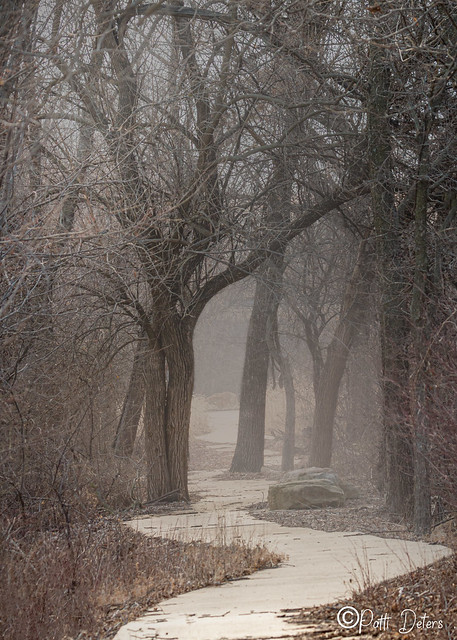 Foggy Pathway - Vertical