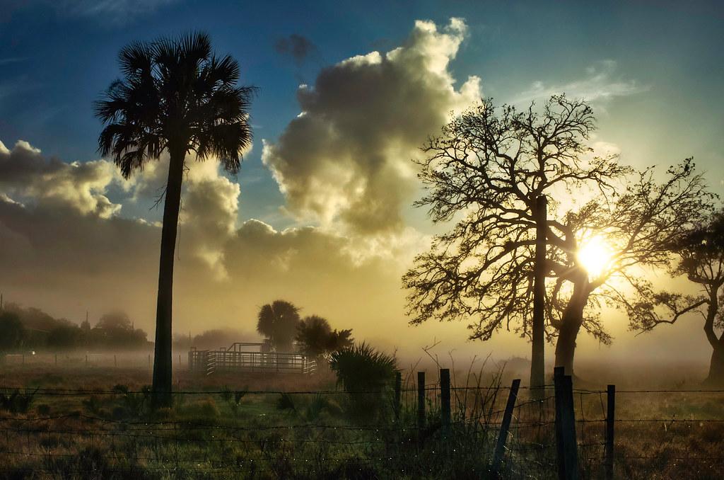 Sunrise Morning Fog.