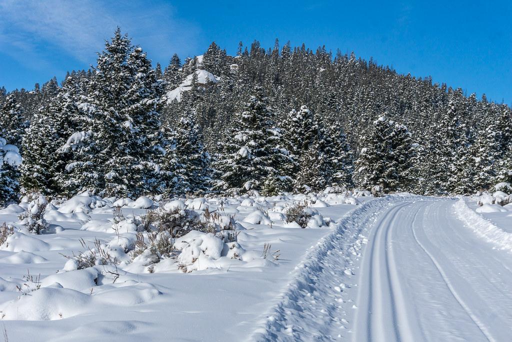11 (ski tracks)