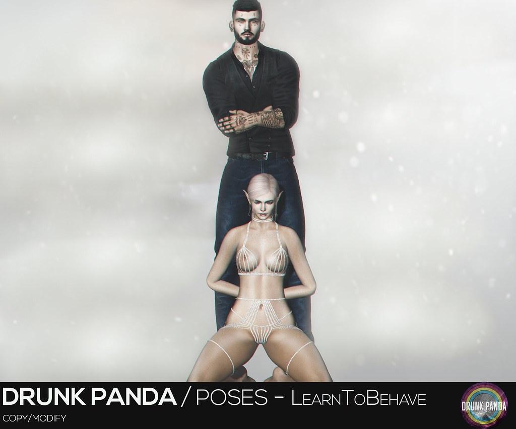 Drunk Panda - LearnToBehave