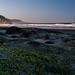 Morro Bay Morning