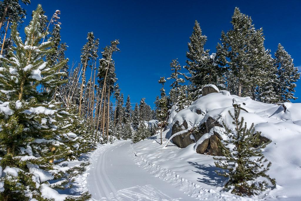 12 (ski tracks)