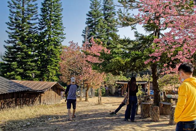 Khun Chang Kian village