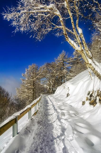 Passeggiando sulla neve