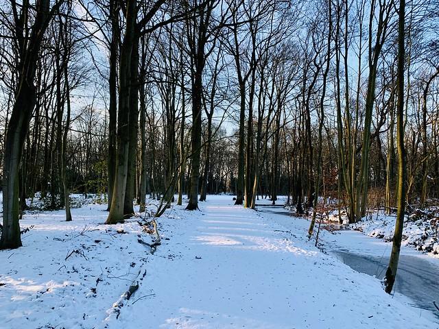 Leidsche hout park (Leiden, The Netherlands 2020)