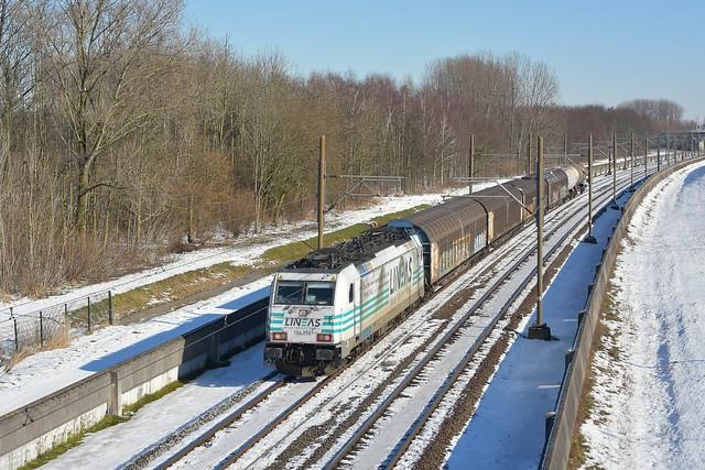 Lineas 186 258; Vaanplein 13-02-2021