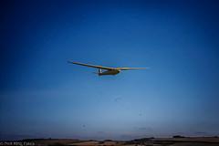 Glider Old Sarum 84 - Photocredit Doug King -7