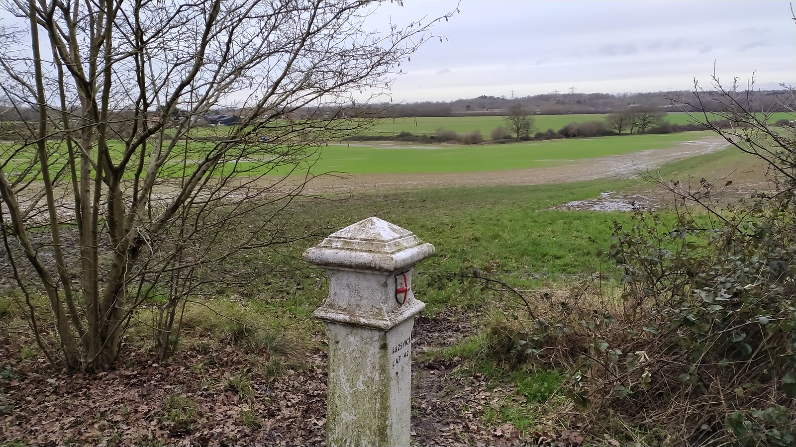 Epson Common Boundary Marker