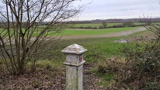 Epson Common Boundary Marker