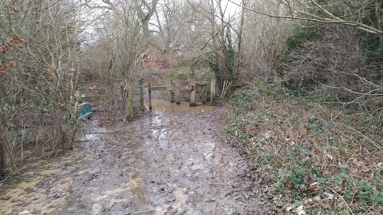 Winter Mud 2