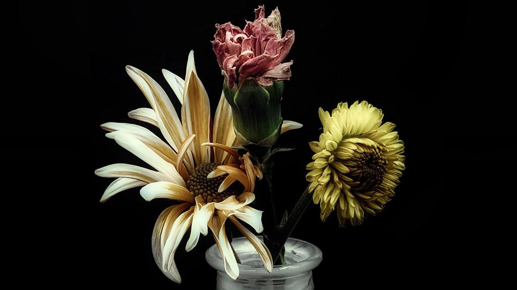 Lightbox - Flowers