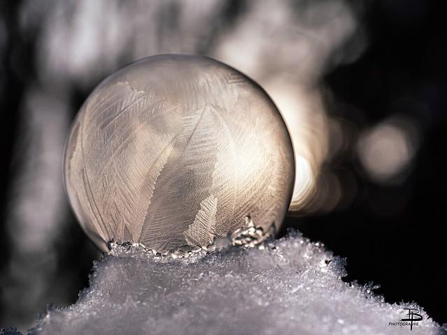 bubble - frozen dream