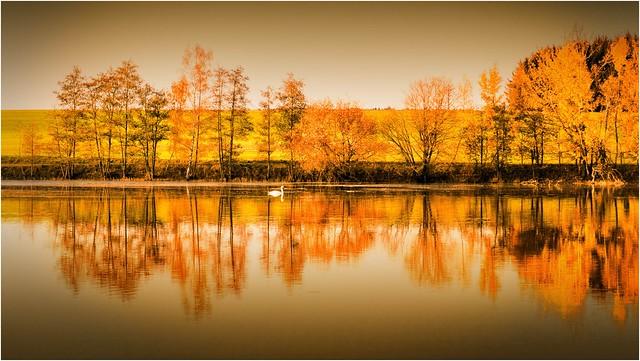 Der Herbst schwimmt davon