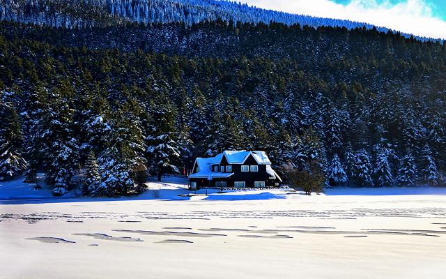 Frozen lake Gölcük,    Bolu  /TÜRKİYE