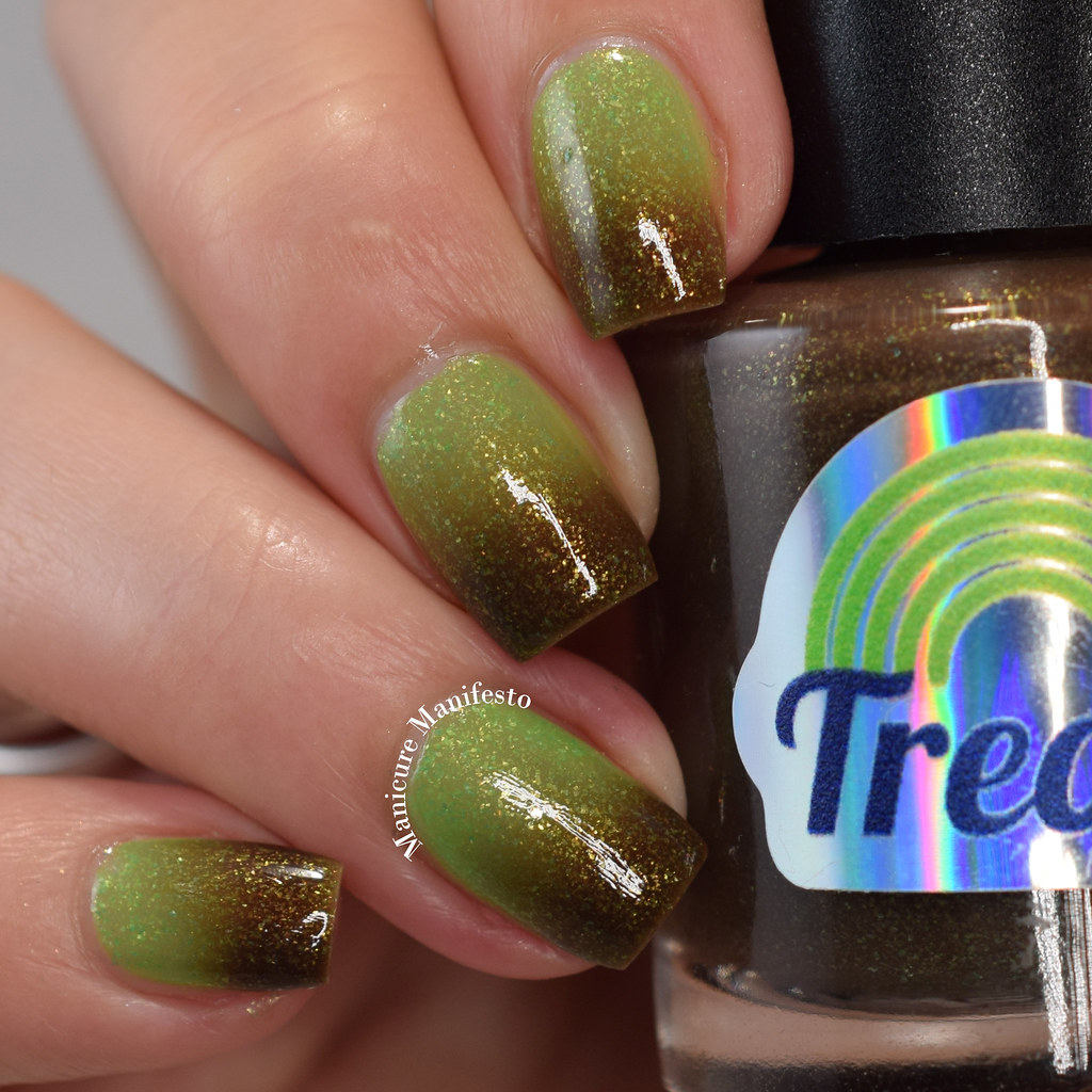 Treo Lacquer Growth review