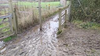 Winter Mud 1