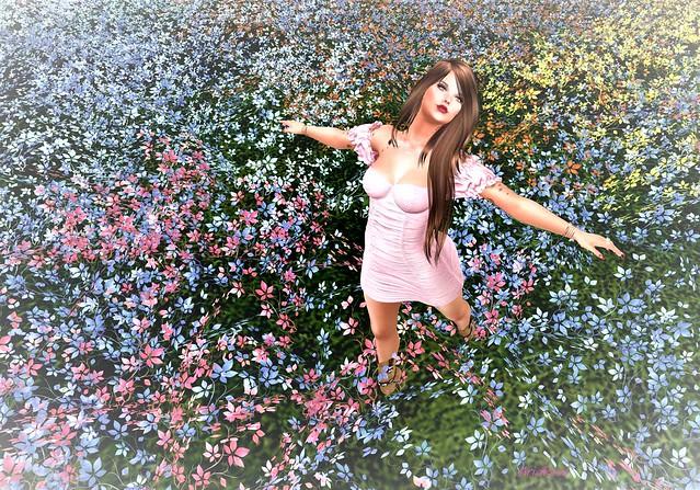 AriaRose-Field of Flowers