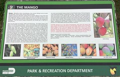 Mango Sign