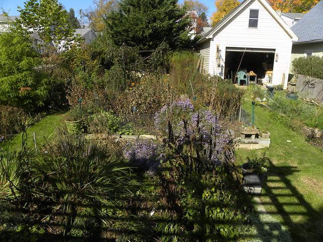 Fall Garden 2020