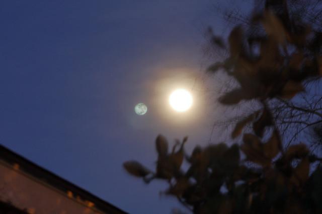 IMG_1490_Wolf Moon