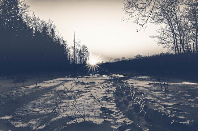 Nature - Paysage - Noir et Blanc