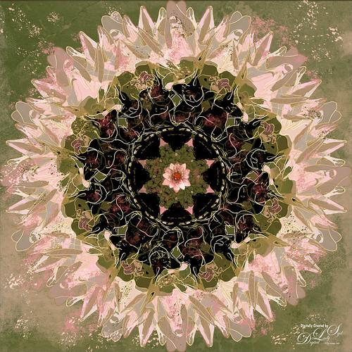 Mandala of a White Lily