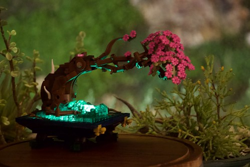 Windswept Bonsai: Eternal Spring Over Glowing Crystal. Perhaps more magical at night.