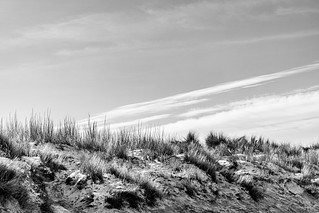 Dune en hiver (Coxyde) | by Philippe Clabots (#PhilippeCPhoto)