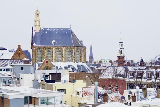 Haagse daken