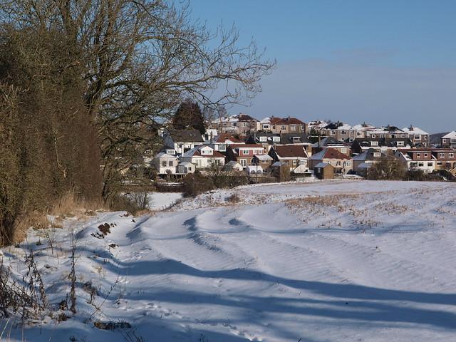Snowy field; edge of the suburbs