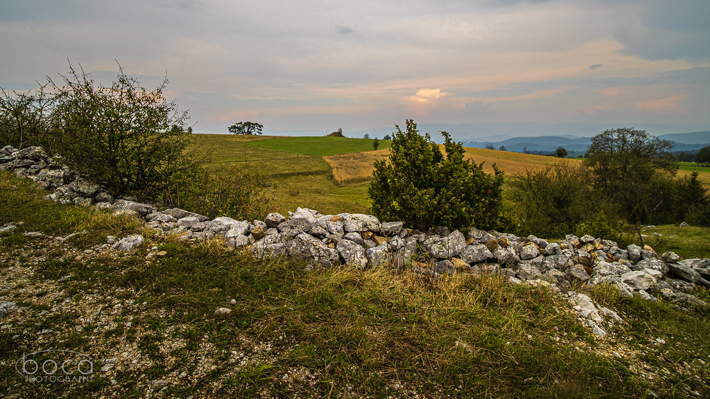 Kamena gora i njen Stari bor