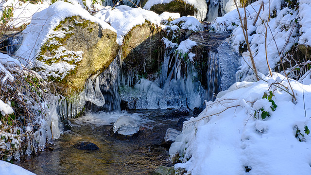 Winter-91232021-4