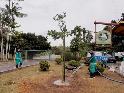 Parque do Mindu passa por trabalhos de revitalização